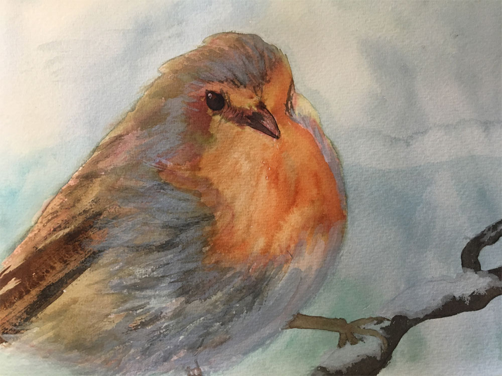Watercolour painting of a robin